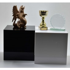 Acrylic Pedestal 300mm²