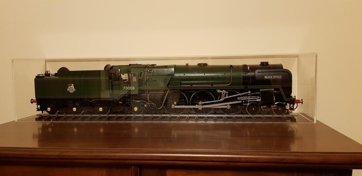 Train in cover